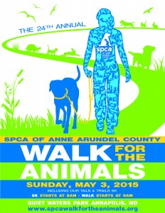 WALK 2015-NEW flyer