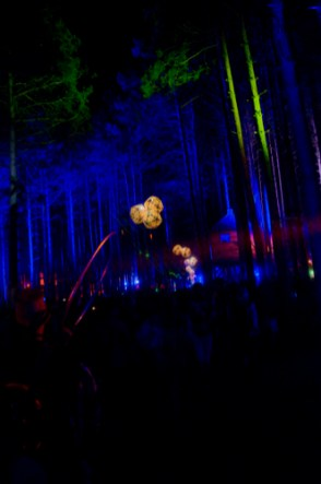 Electric-Forest-2015-115