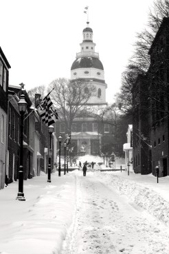 Annapolis Snow January 2016-12