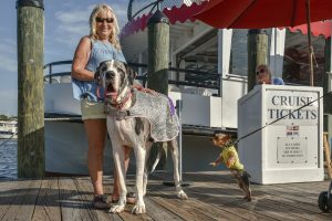 Watermark Yacht Dog Days Cruise