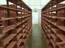 BIG Shelves 1