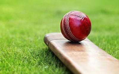 Cricket Warning