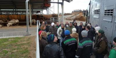 03.01.2013 Eyes on Animals gives Welfare Workshop to Hungarian livestock drivers