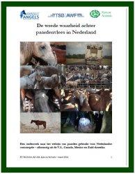 Cover-paardenonderzoek