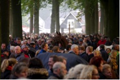18.10.2016 Inspection horsemarket Zuidlaren