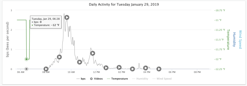 Eyesonhives Bee Monitor Activity Graph showing a temperature of -12F