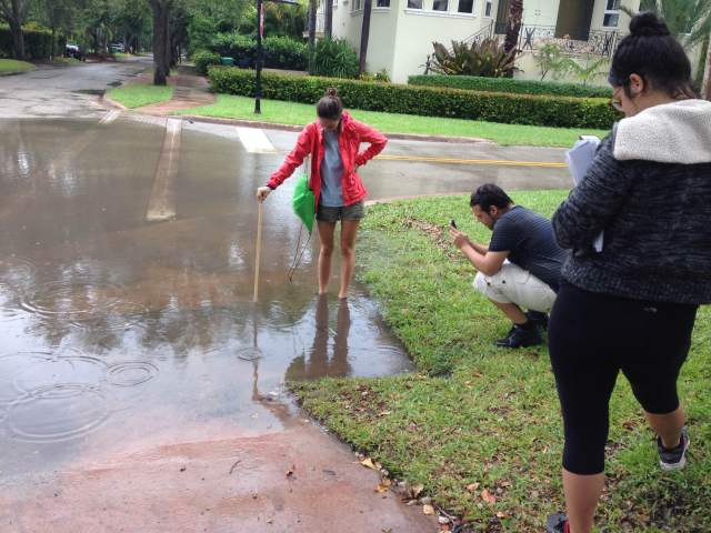 Shelby Servais, an FIU student measured flood water during the Oct. 16 Sea Level Solutions Day in Miami-Dade County. Data were submitted to the eyesontherise.org Sea Level Rise Toolkit at eyesontherise.org/app.