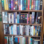 Books in excellent condition on shelves for sale at Bookworm bargains in Upper Highway Kwazulu Natal