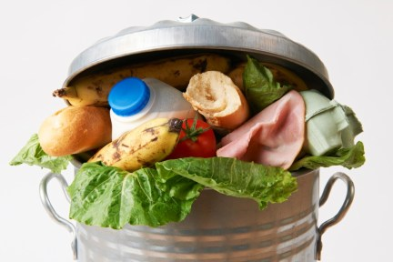 garbage can filled with uneaten food