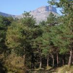 Sierra Salvada: conflictos entre alaveses, burgaleses y vizcaínos (II)