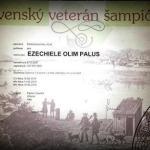 Campione Veterani Slovacco