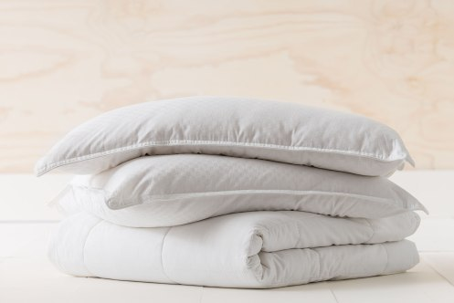 """Love my cotton pillow, a bit pricey, but if you want the best that's what you have to do sometimes."" Pickles. Search for the Cotton Pillow online now - 108064"