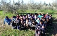 Ayvacık'ta 97 Düzensiz Göçmen Yakalandı
