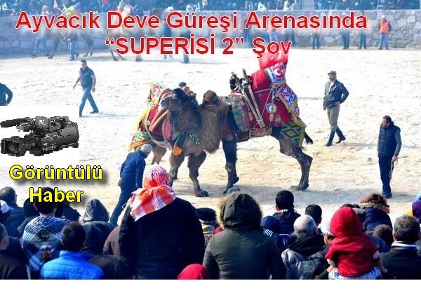 """Ayvacık Deve Güreşi Arenasında  """"SU PERİSİ 2"""" Şov"""
