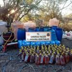 Eceabat'ta 1.510 litre kaçak şarap ele geçirildi