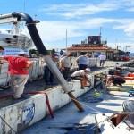 Çanakkale'de Misulaj Temizliği Devam Ediyor