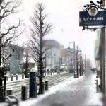 yukigeshiki2012_2
