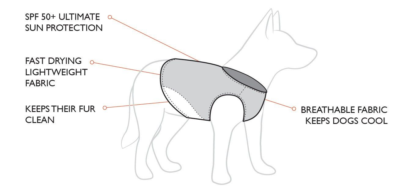 hight resolution of dog life jacket features