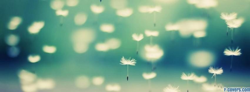 Mudding Soccor Girl Wallpaper Dandelions Facebook Cover Timeline Photo Banner For Fb