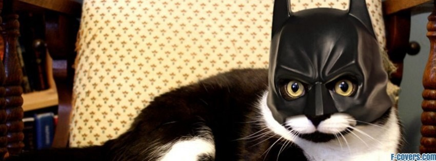 batman cat Facebook Cover timeline photo banner for fb