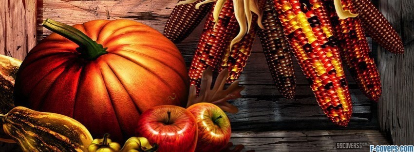 Free Fall Mums Wallpaper Thanksgiving Facebook Cover Timeline Photo Banner For Fb