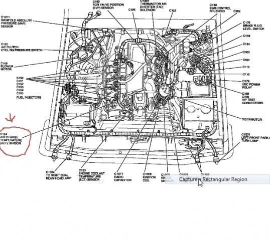 1996 F Ford Firing Order 150