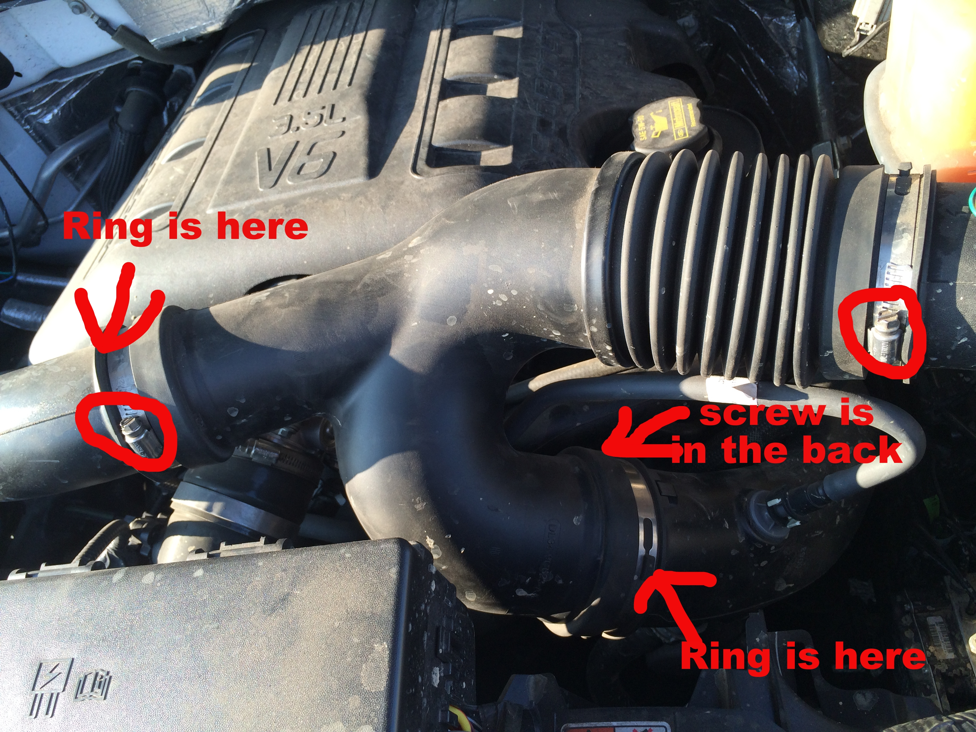 ecoboost silencer ring removal ford