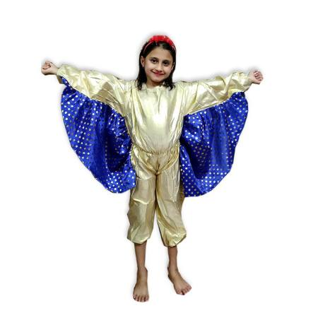 Kids Butterfly Costume Fancy Dress on Rent