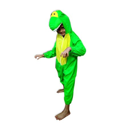 Kids Dragon Costume Fancy Dress on Rent