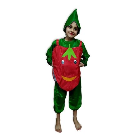 Kids Strawberry Costume Fancy Dress on Rent