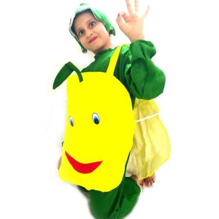 Lemon Costume on rent