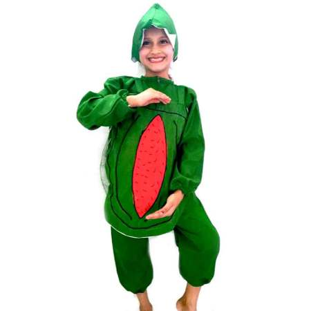 Watermelon Costume on Rent