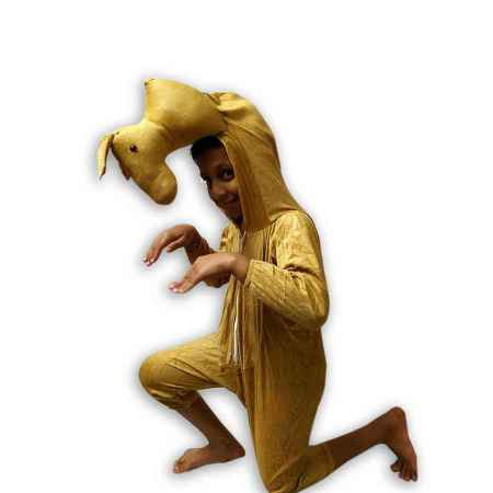 Hire Camel Costume