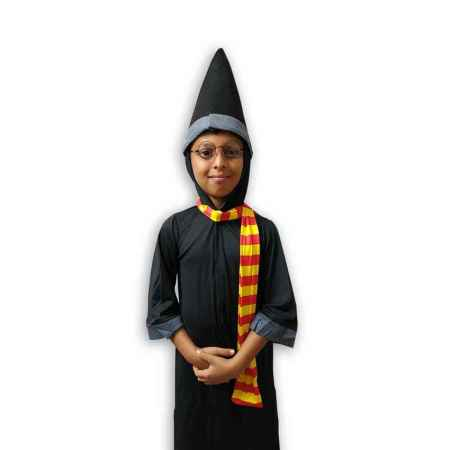 Hire Harry Potter Costume