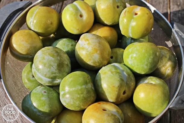 Greengage Jam - Fab Food 4 All