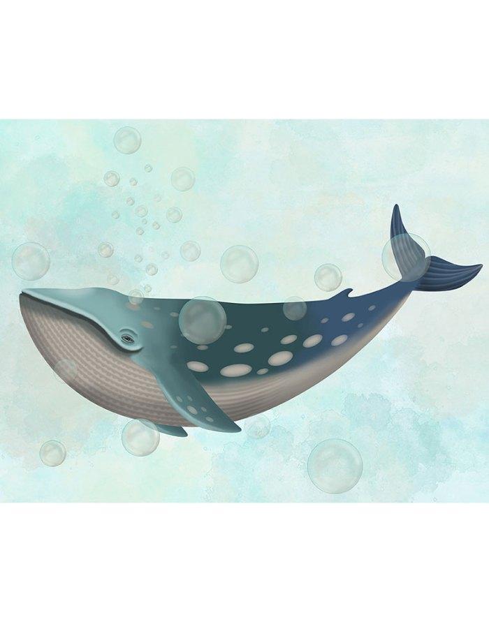 Whale Bubbles 1