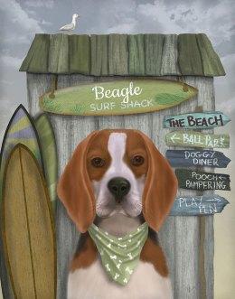 Beagle Surf Shack
