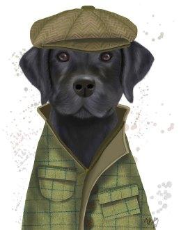 Labrador Black Country Dog