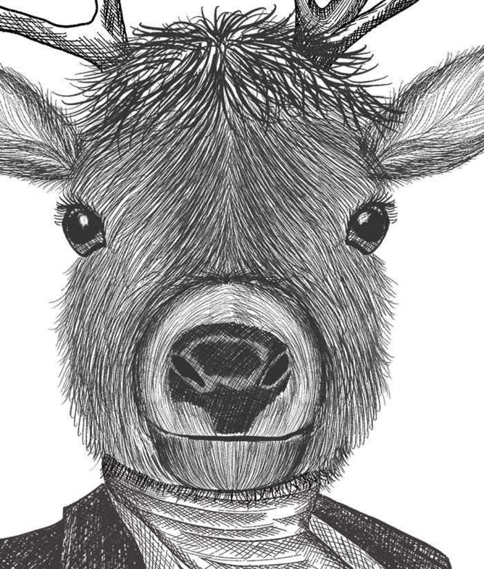 Portrait of Distinguished Deer