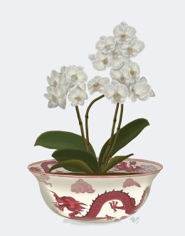 Chinoiserie Orchids White