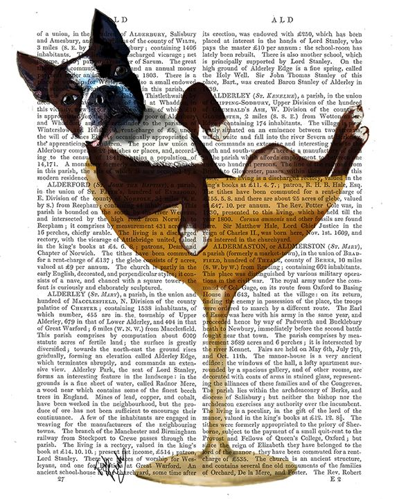 Boston Terrier in Cocktail Glass