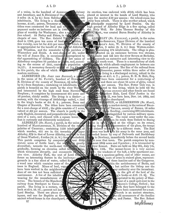 Skeleton on Unicycle