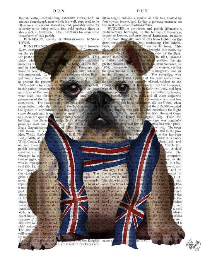 English Bulldog with Scarf