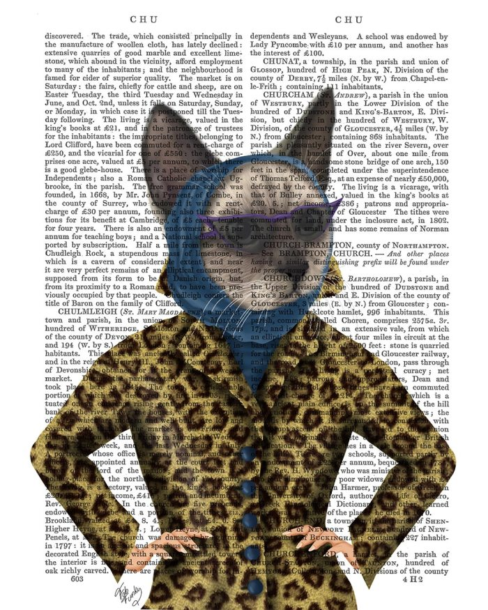 Cat with Leopard Jacket