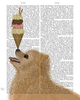 Pomeranian Ice Cream