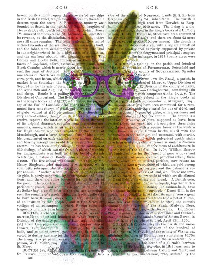 Rabbit Rainbow Splash 1