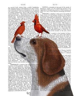 Beagle and Red Cardinals