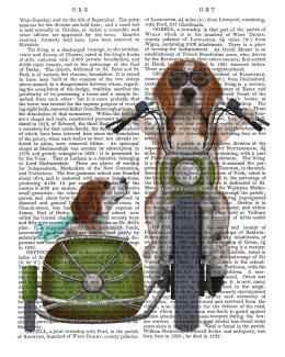 Beagle Chopper and Sidecar