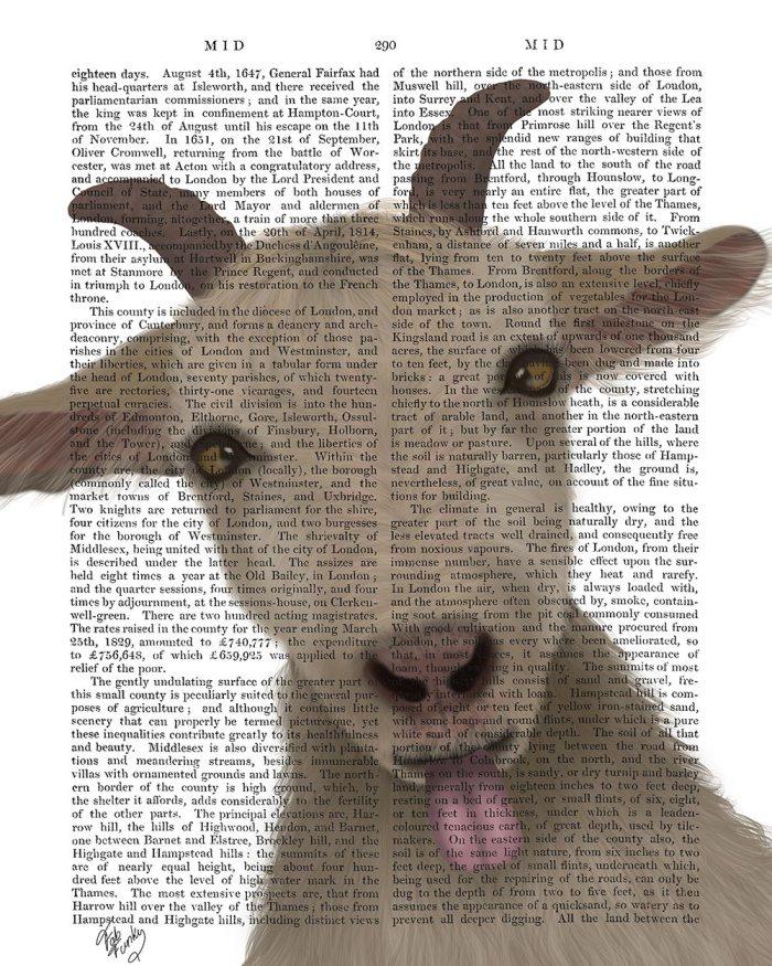 Funny Farm Goat 2
