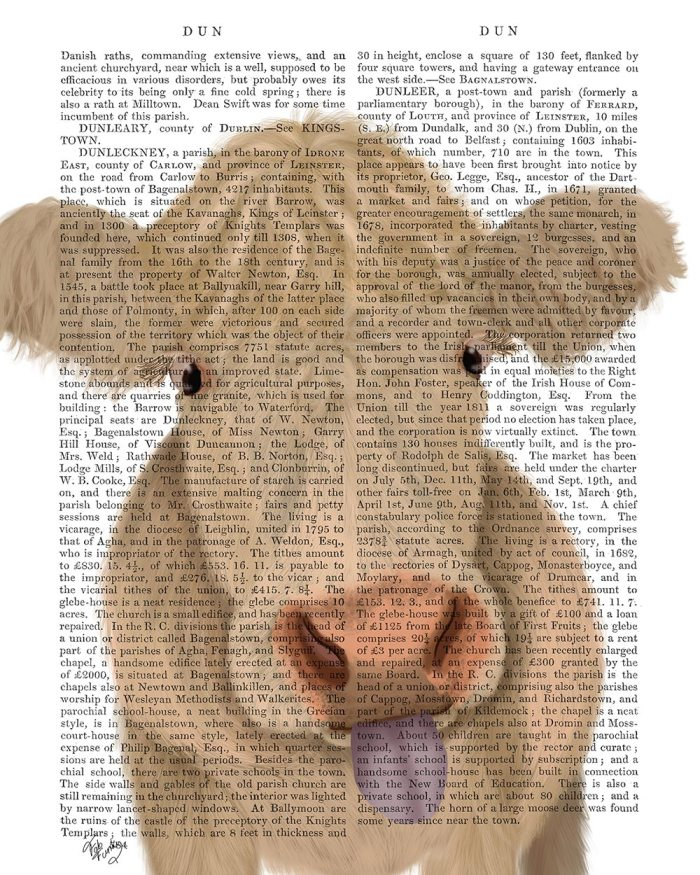 Funny Farm Cow 1